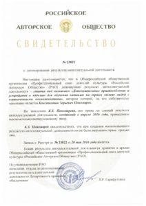 РАО статья 2 доп устр (2)